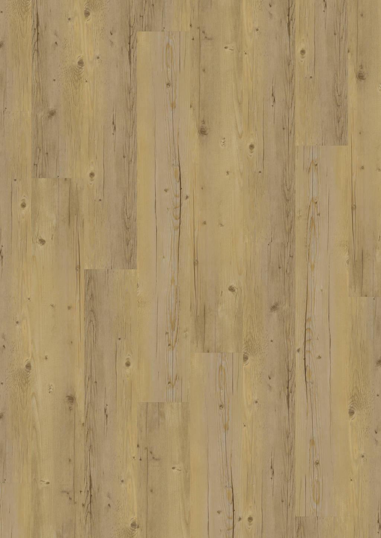 Blond Pine