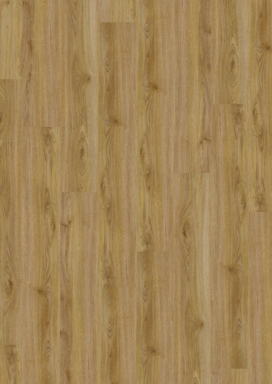 Cozy Oak
