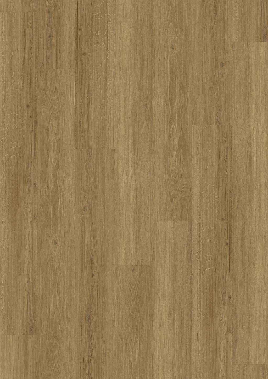 Incredible Classic Oak