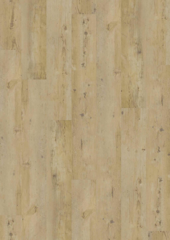 Wormy Light Oak