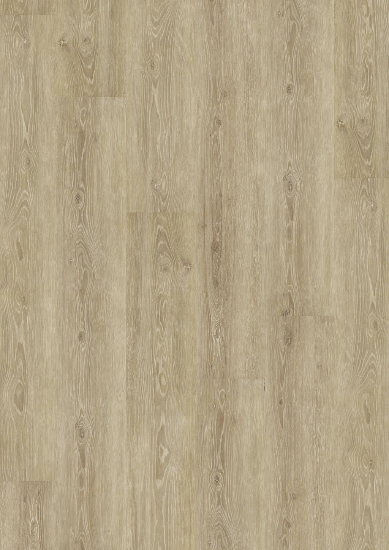 Perfect Ivory Oak
